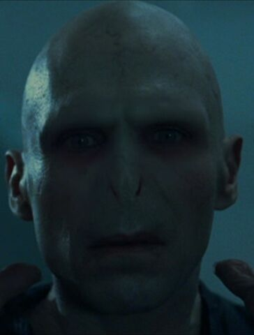 File:VoldemortFaceGoF.jpg