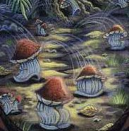 File:Leaping toadstools (cropped).jpg