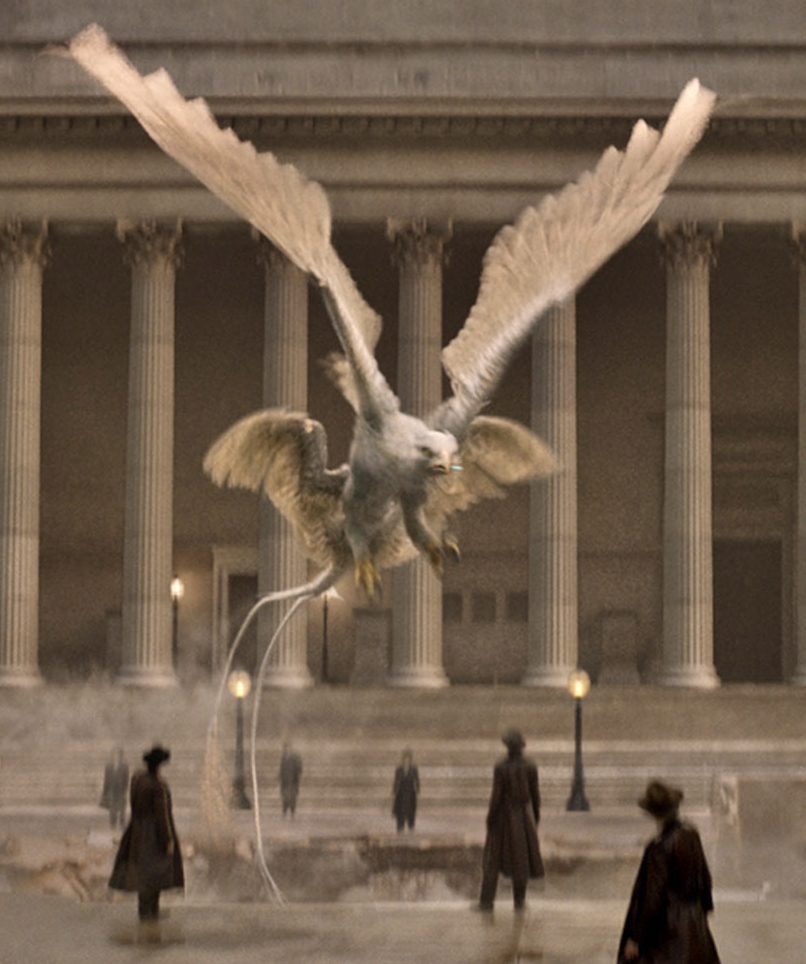 Thunderbird | Harry Potter Wiki | Fandom powered by Wikia - photo#15