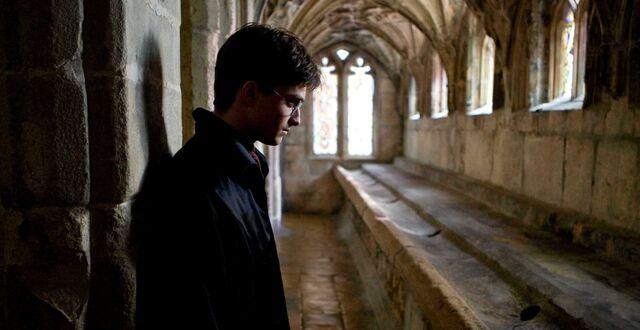 File:Harry in Hallway.jpg