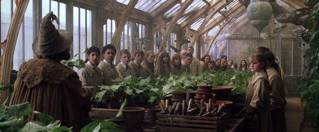 File:Professor Sprout greenhouse 1.png