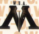 Wizarding Examinations Authority