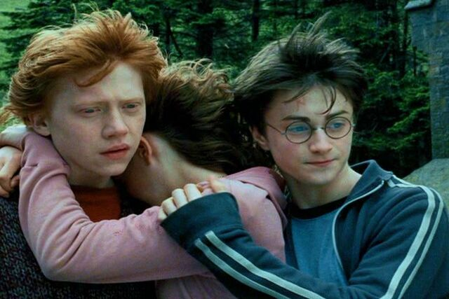 File:Ron, Hermione, Harry (4).JPG