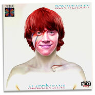 HP-Aladdin-Sane-Cover