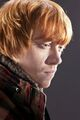 Deathly-Hallows-Part-1-Promo-rupert-grint-27535606-960-1280.jpg