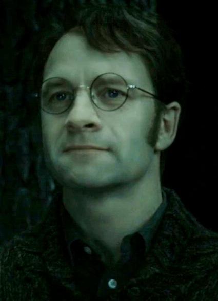 Harry Potters Vater