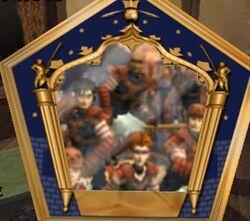 American National Quidditch team