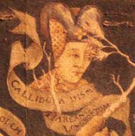 Callidora Black