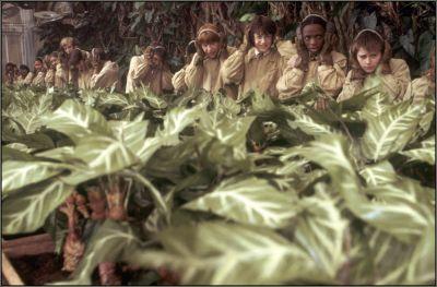 File:Herbology2.jpg