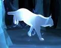 Lynx Patronus.png