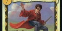 Bucking Broomstick (Trading Card)