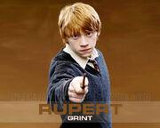 Ron Weasley Rupert Grint
