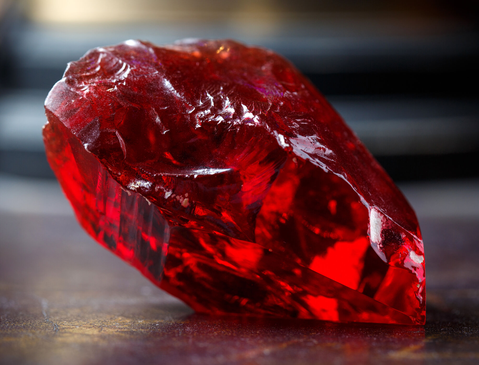 Red Phoenix Stone : Philosopher s stone harry potter wiki fandom powered