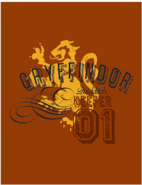 Gryffindor™ Quidditch™ Keeper 01 Poster - Harry Potter and the Half-Blood Prince™