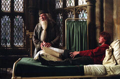 Dumbledore Bedside Manner POA