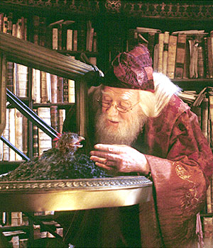 File:Dumbledore and Fawkes.jpg