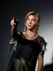 DH Tonks ready for battle