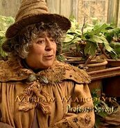 Miriam Margolyes (Professor Sprout) CoS screenshot