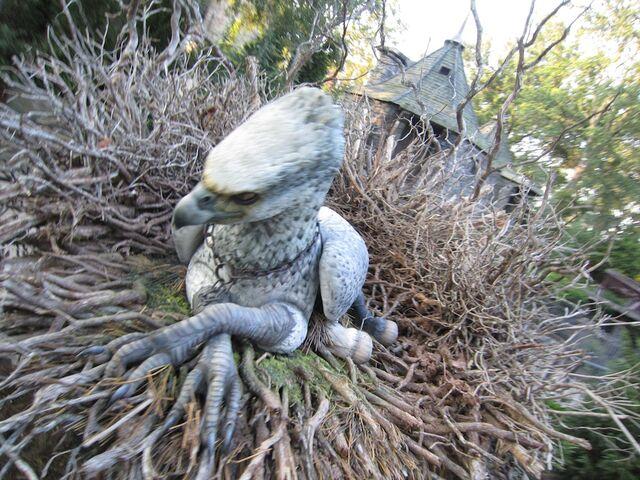 File:Buckbeak.jpg