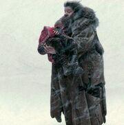 Hagridrescueskatie