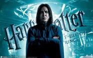 Severus Snape - HBP banner