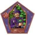 Beaumont Marjoribanks-33-chocFrogCard.png