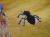 RFF-Killer ant