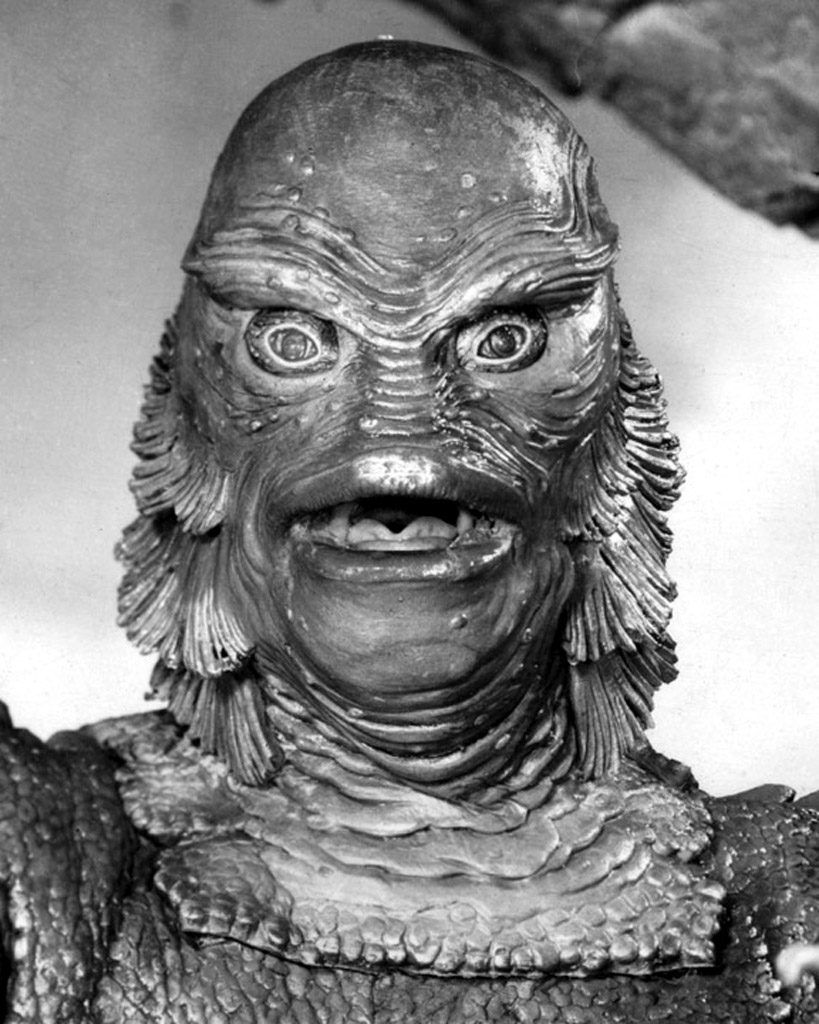 My creature from the black lagoon essay by stephen king