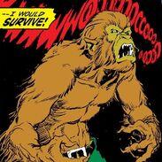 I was a werewolf