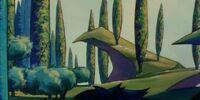 Mystacor Forest