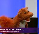 Star Schlessinger