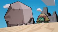 Big Baby Turtles 198