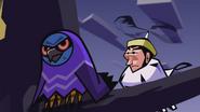 Owl King 8