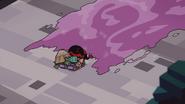 Big Baby Turtles 017
