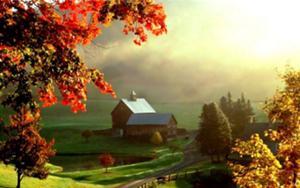 Florence's Farm
