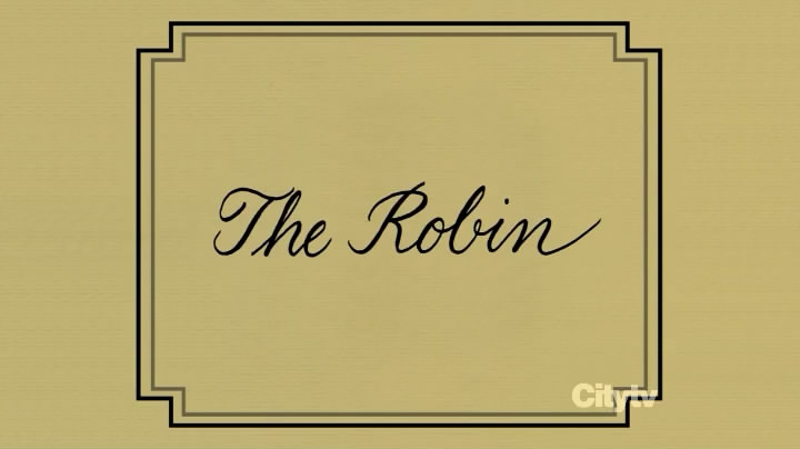 The Robin How I Met Your Mother Wiki Fandom Powered By Wikia