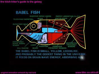 Babelfish1981