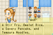 Harvest Moon - Friends of Mineral Town 04 (4)