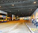 東涌站總站