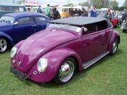 Purple beetle