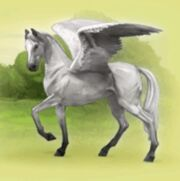 Pegasus for Pegasus Account