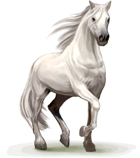 image horse home png howrse wiki fandom powered by wikia free cinderella clipart free printable cinderella clipart