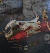 DragonIsland-RedDeathBones3