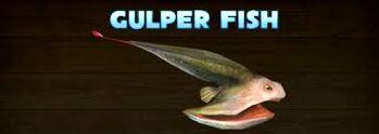 Hungry shark evolution gulper fish