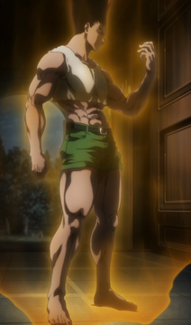 Adult Gon Anime.png
