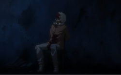 Owl after being torture by Feitan