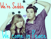 Seddie background