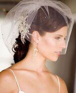 Short-wedding-veil