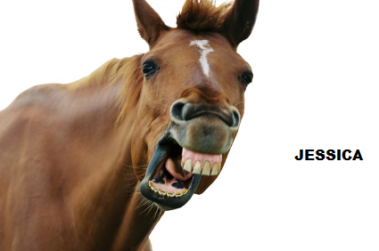 File:Horsejess.png