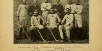 1896-97 AAHL season